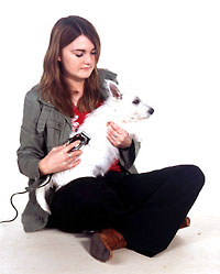 woman sitting grooming a dogs coat
