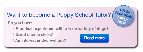 Want to become a Puppy School tutor