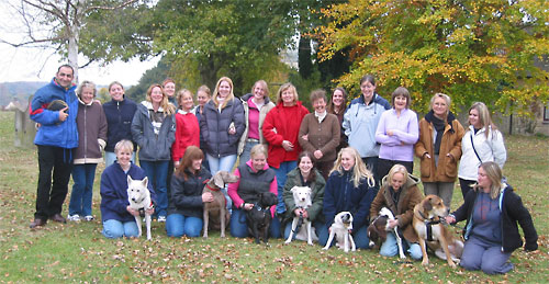 Puppy School - Puppy Training Tutors